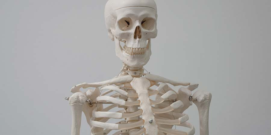 Cuáles son los tipos de cáncer de huesos
